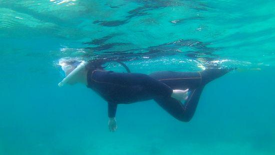 きれいなフォームで泳いでいます。