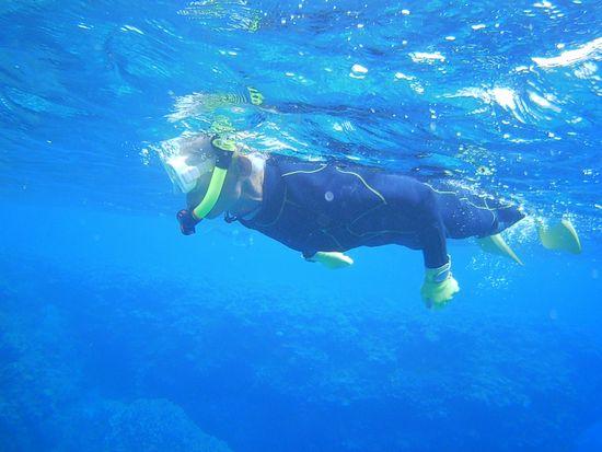一人で泳ぎ始めていますね
