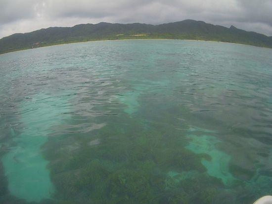 今日は曇り午後からは小雨の石垣島です。