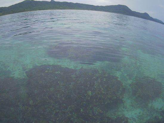 まるでプールのように穏やかな海です。