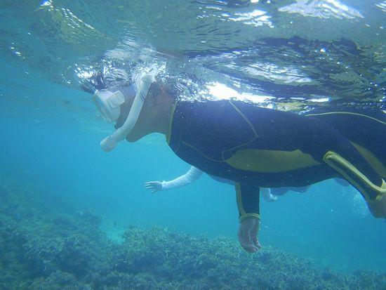 お姉ちゃん、すいすい泳いでいます。