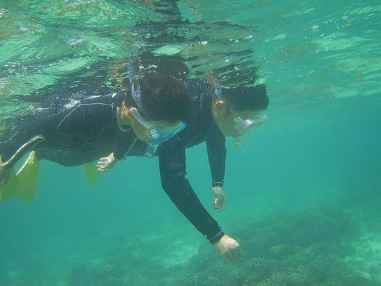 お父さんと一緒に泳いだり