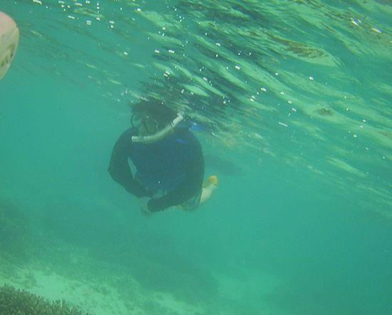 お父さん、すいすい泳いでいます。