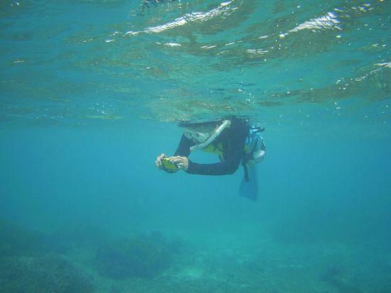 お父さんは、水中カメラで撮影です。