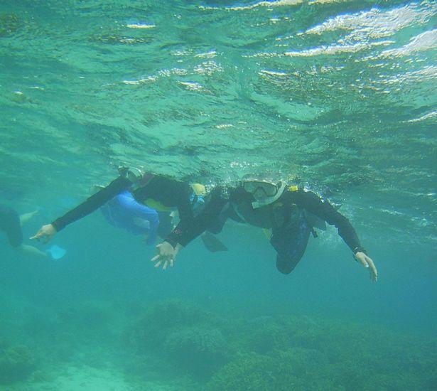 H本さん、こちらも波に負けず泳いでいます。