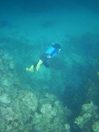 水底に向かって素潜りドボン