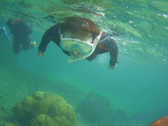 がんがん泳ぐT辺さんです。
