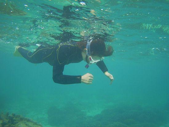 お母さん、サンゴに没頭です。