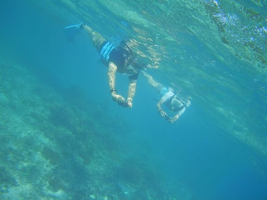 ご夫婦そろって、水中カメラ