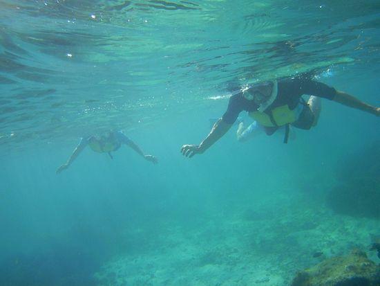 マイペースに泳ぐK堂さん