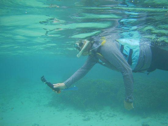お父さんは水中撮影
