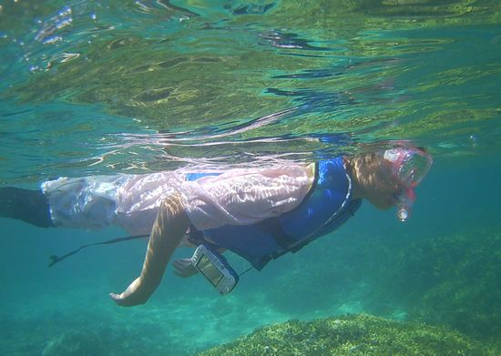ハルカちゃんもスピーディに泳いでいますね