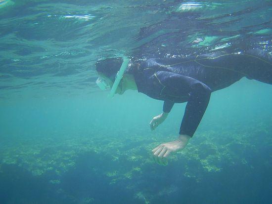 H田さんも余裕の様子で泳いでいます。