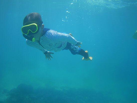 おっ!良い感じで泳いでいます。
