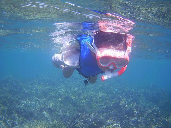 ヒナちゃん、余裕の泳ぎです。