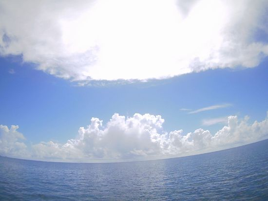 暑すぎず、快適な石垣島です。