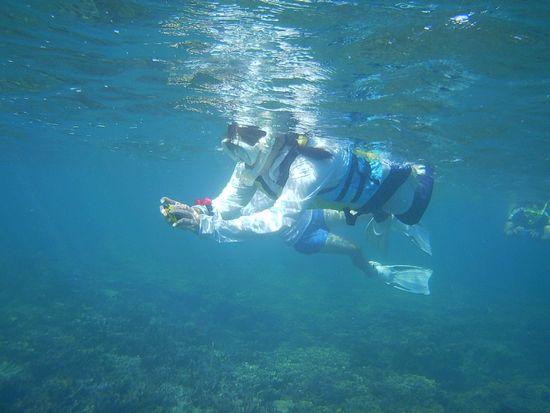 水中カメラを楽しむお母さん
