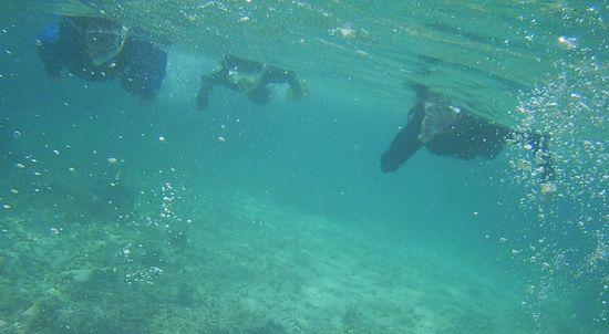 お父さんとお母さん、ユナちゃんと一緒に泳いでいます。