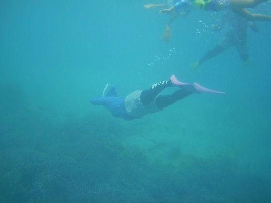 水中世界を楽しんでいます。