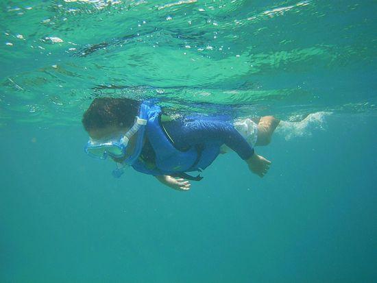セイジロウ君はがんがん泳ぎ回っています。