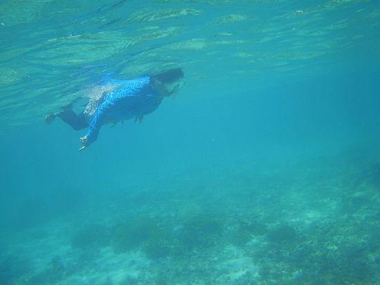 マイペースに泳ぐおばあちゃん
