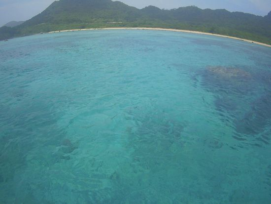透明度抜群の海です。