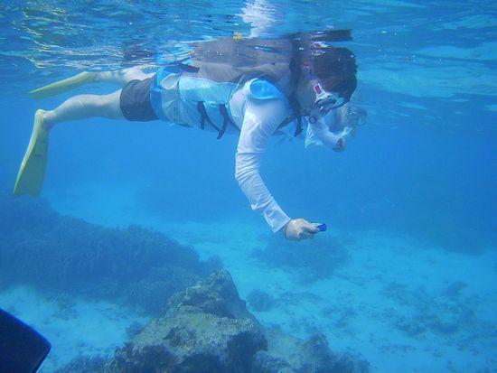 奥さんは水中カメラで撮影です
