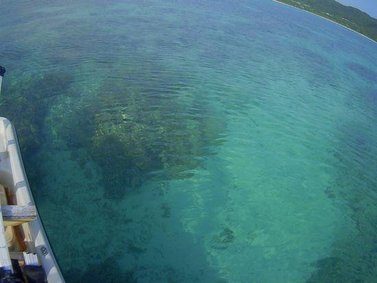 朝は、プールのような海です。
