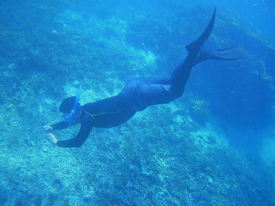 水中写真撮影のお父さん