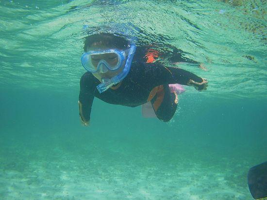 一人前の泳ぎです。