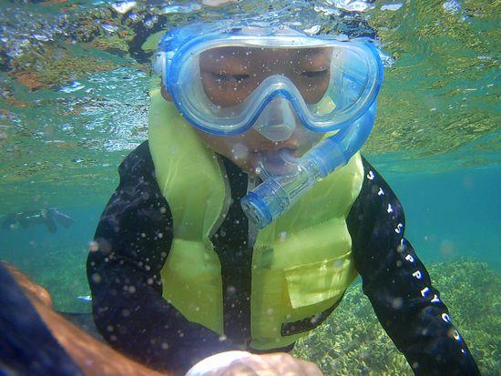頑張って顔を海につけています。