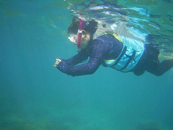 早速水中撮影