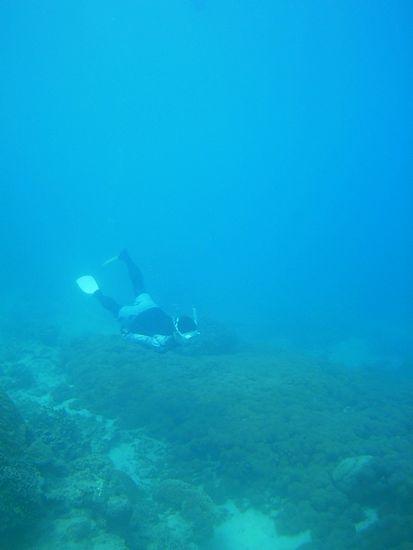 水底を水平移動のA山さん