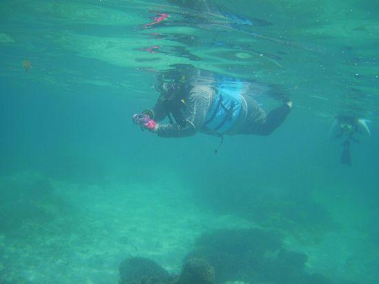 水中カメラを楽しんでいます。