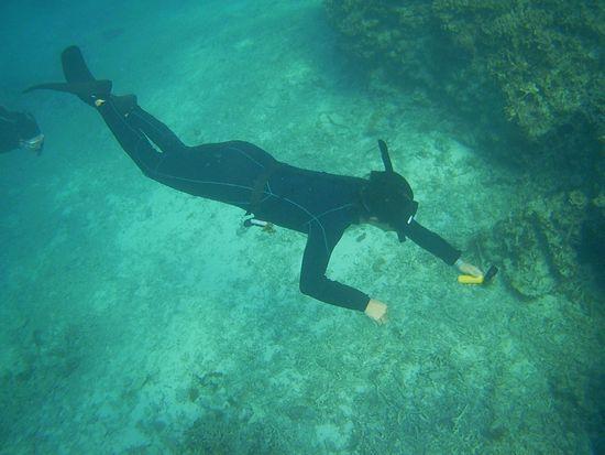 O野さんは、潜って水中撮影