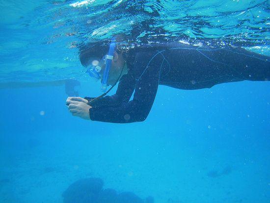 水中写真撮影が始まります。
