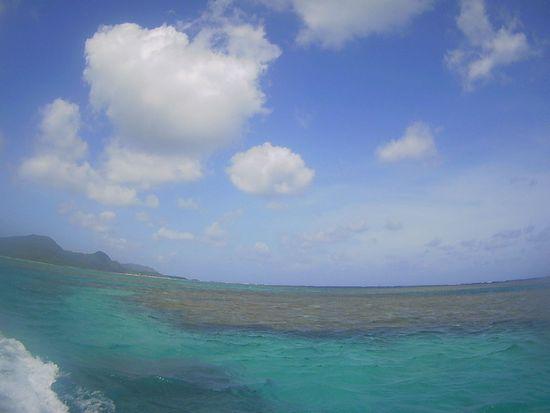 風波はありの石垣島ですが、シュノーケルツアーはいつも通りです。