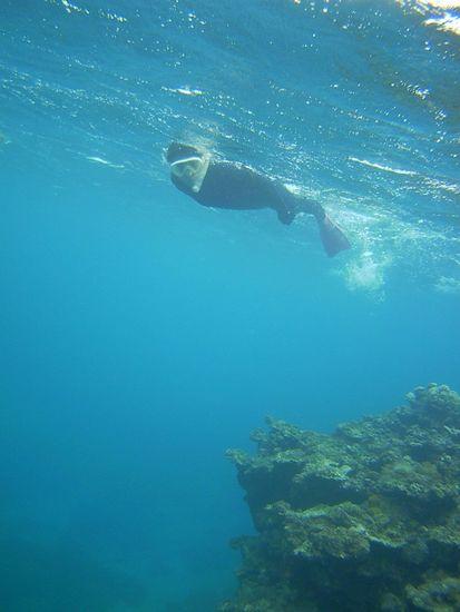 一番活発な泳ぎのS川さん