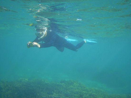 お父さんは水中写真撮影