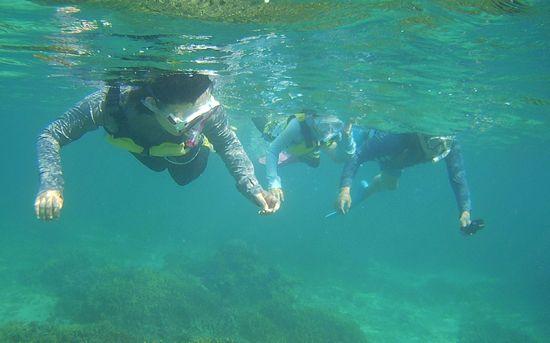 石垣島の海をシュノーケル