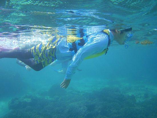 かなり慣れた泳ぎのお兄ちゃんです