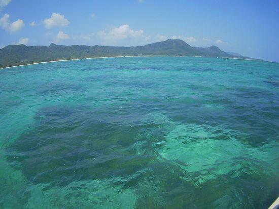 日焼け日和の石垣島、シュノーケル日和です