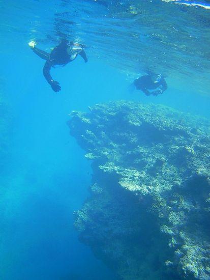 石垣島の海は完全復活です。