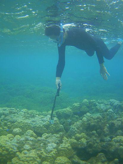 お父さんはらくちん水中撮影です