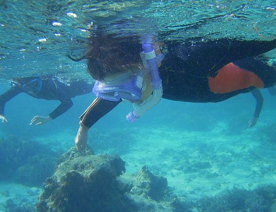 慣れれば一人で泳ぎ始めています。