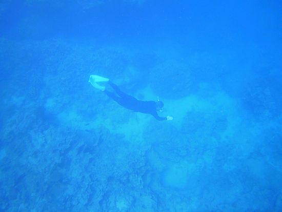ドボンと潜って楽しんでいます。