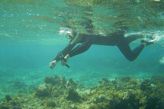 水中カメラで撮影開始