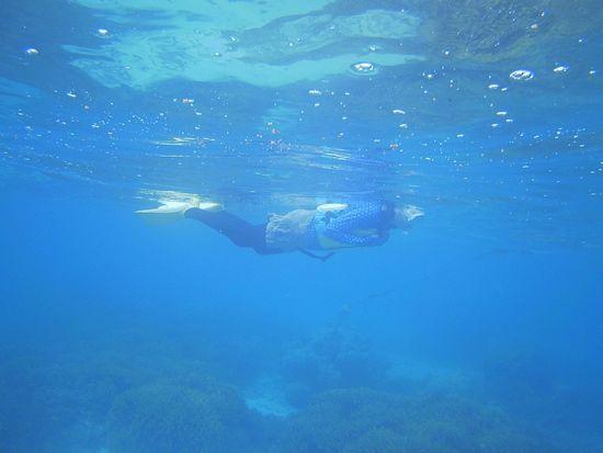 すいすい泳いで楽しんでいます