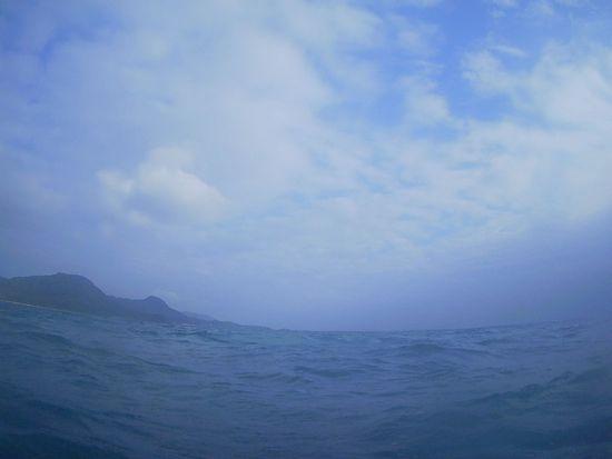 今日は曇りの一日です。