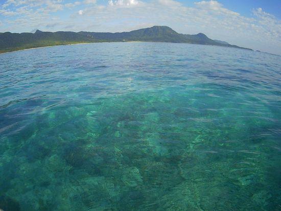本日も晴れの石垣島です
